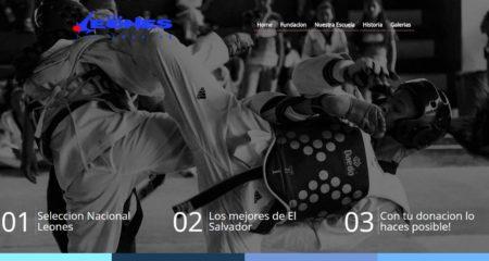 Diseño de paginas web Guatemala  Fundacion Leones, la primera fundacion en utilizar crowdfunding para la recolección colectiva de fondos en El pais.